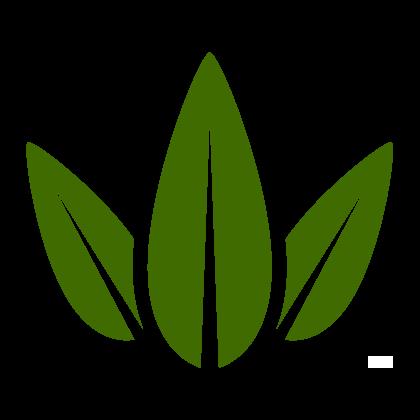 Dísznövény kölcsönzés