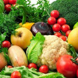 Zöldség palánták és fűszer növények
